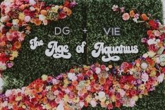 DG + VIE 2018